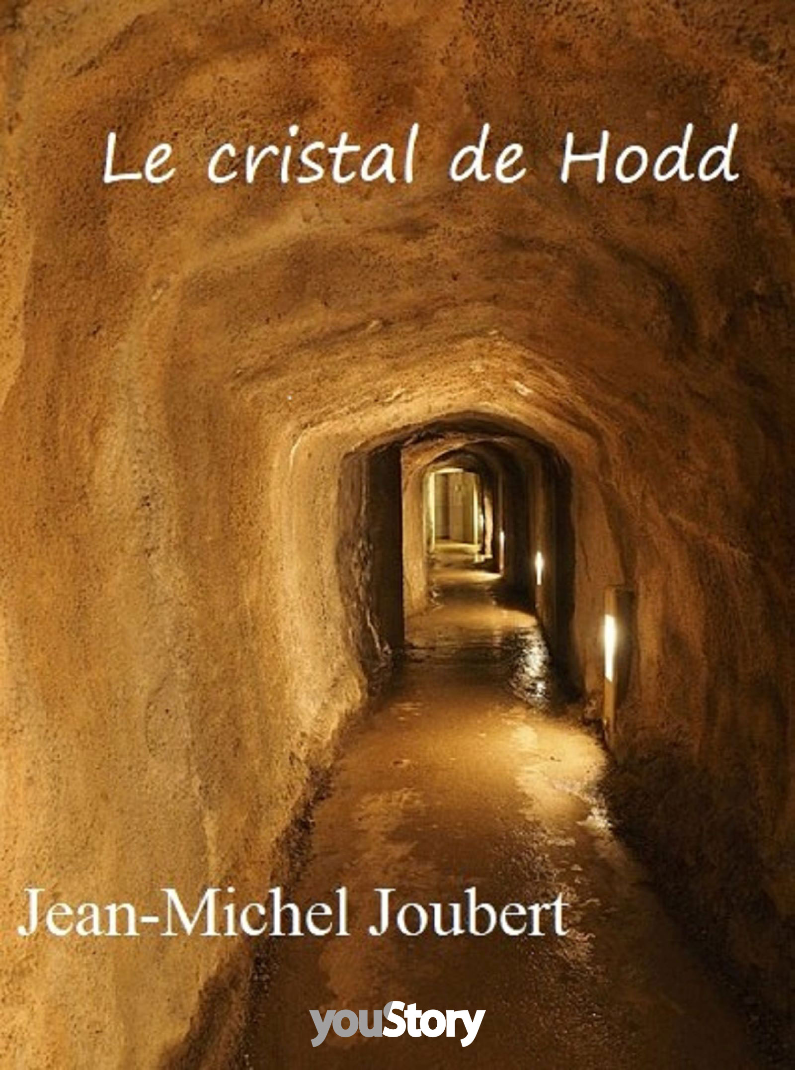 Couverture ebook Le cristal de Hodd