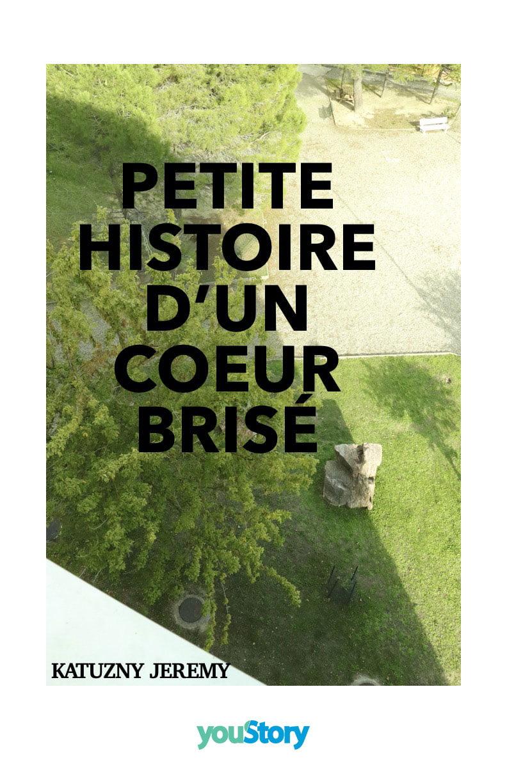 Couverture Petite histoire d'un coeur brisé de Jérémy Kutzany